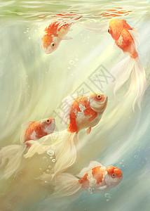 金鱼图图片