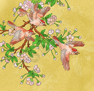 中国风国潮工笔画三只小鸟梅花图图片
