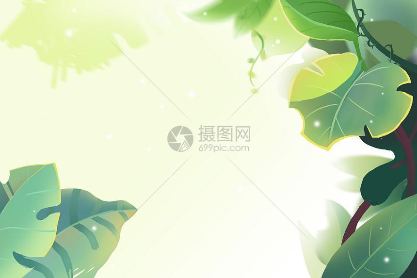 清新叶子背景图片