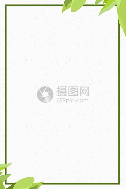 简约绿叶背景图片