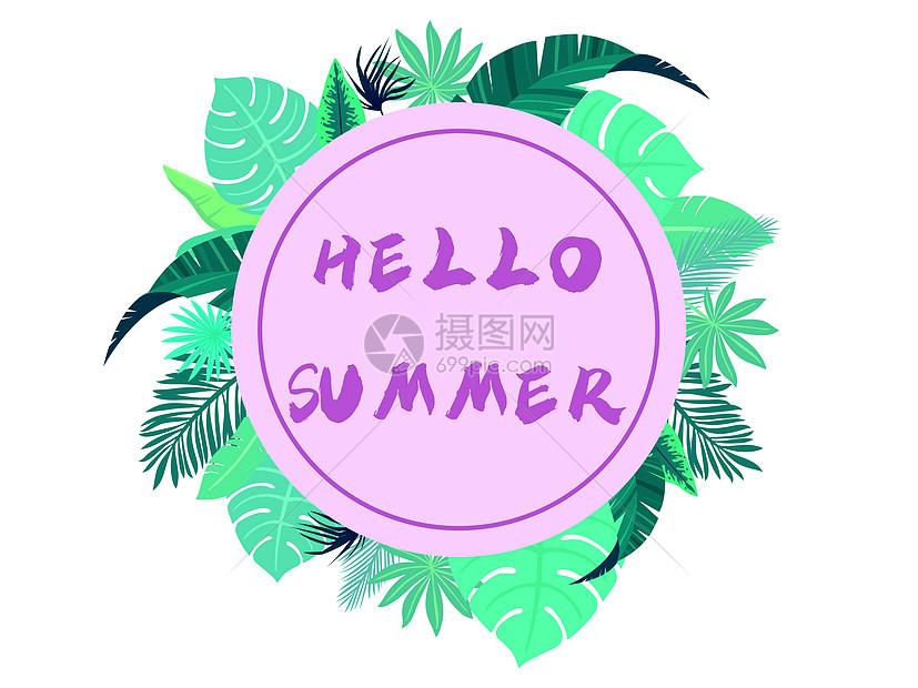 夏天植物背景矢量插画图片