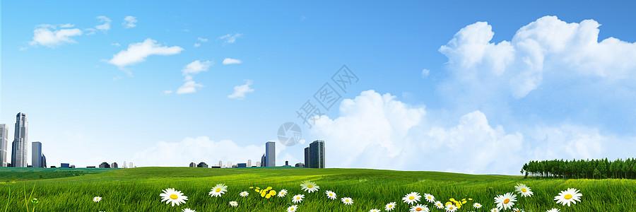 清新草地背景图片