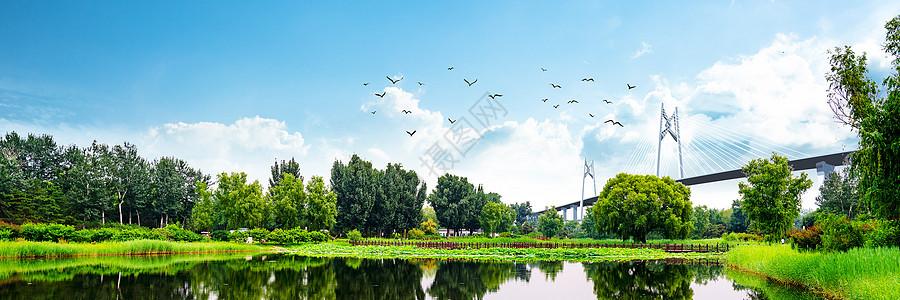 绿地背景图片