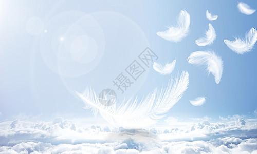 羽毛天空背景图片