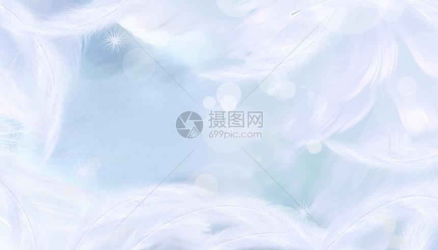 梦幻羽毛背景图片