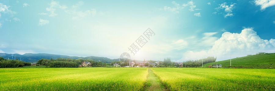 天空草地背景图片