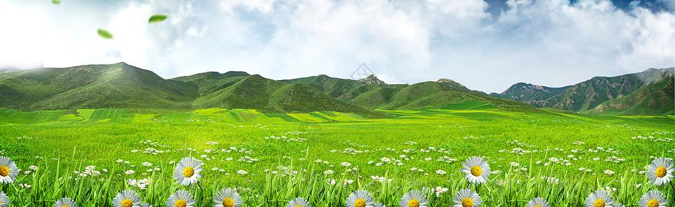 清新环保背景图片
