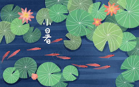 创意小清新手绘风小暑夏季荷花插画图片