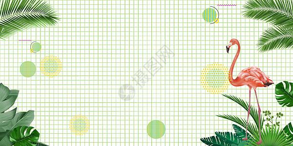 ins风清新植物背景图片