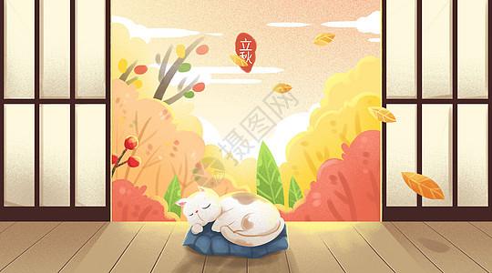 立秋慵懒惬意的猫图片