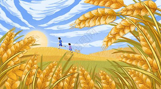 丰收 麦子 秋天图片