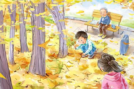 小朋友拾枫叶秋天插画图片