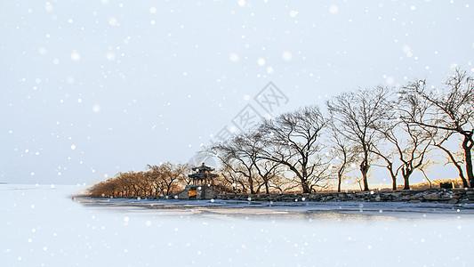 冬季简约背景图片