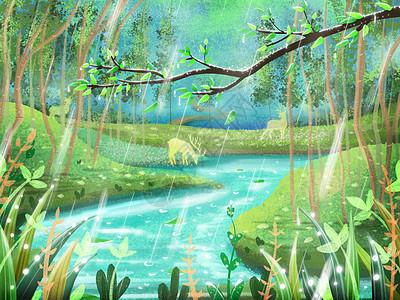 雨水节气下雨唯美的森林图片