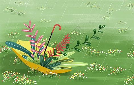 春天雨水插画图片