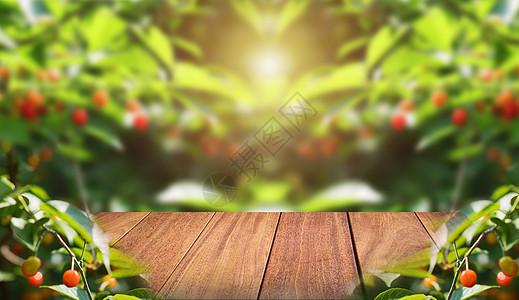 创意果园图片