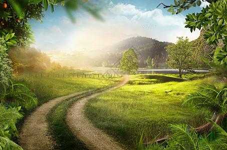 美丽的乡村小路图片