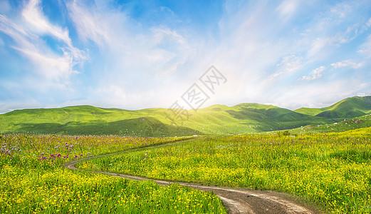 乡村田野小路背景图片