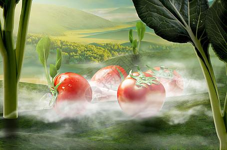 创意蔬菜场景图片