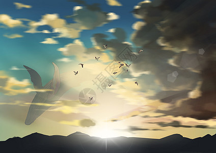 天空与鲸鱼图片