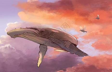 梦幻系鲸鱼遨游图片