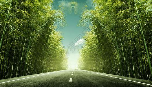 竹林公路背景图片