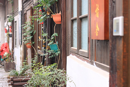 外墙上的盆栽图片