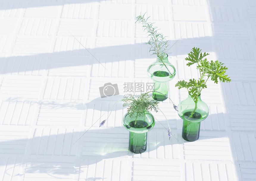 窗户下有三个绿色玻璃瓶种着植物图片