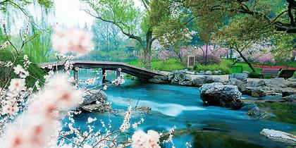 杭州太子湾公园图片