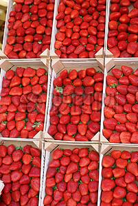 框子里的草莓图片