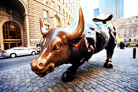 华尔街的牛图片