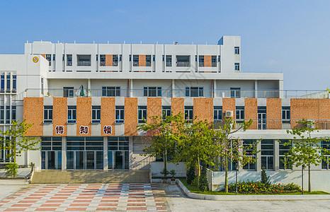 学校图书馆图片