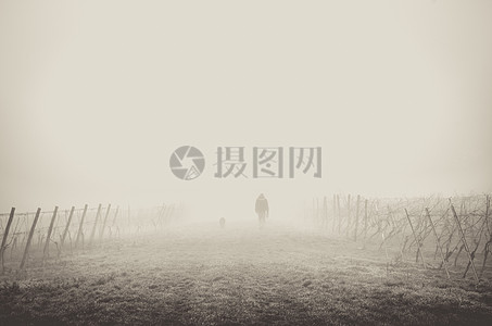 雾蒙蒙中的人影图片