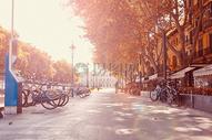 秋天的校园风景图片