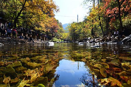 山中溪流图片