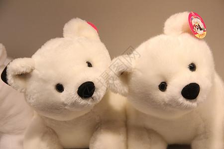 毛绒北极熊玩具图片