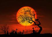 墓地照明插图图片