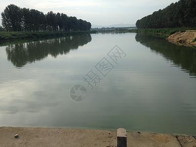 夏天美丽平静的河面图片