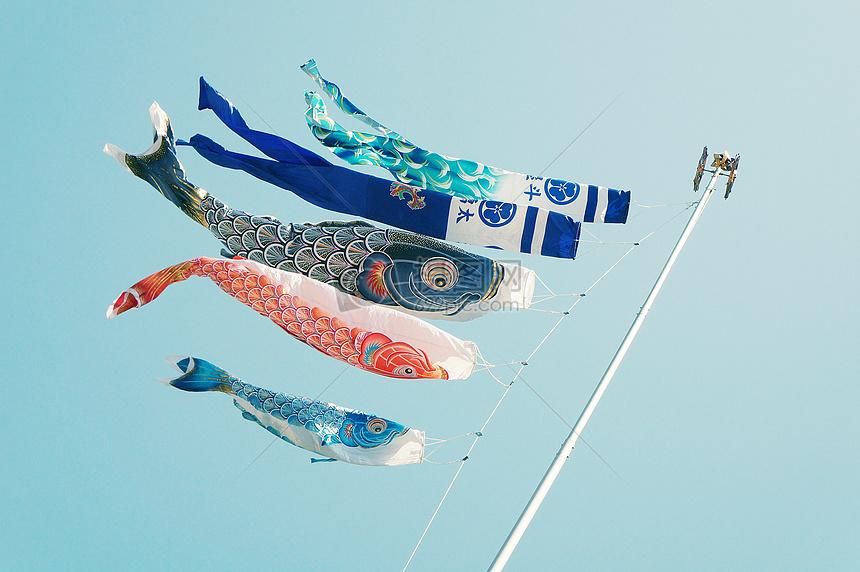 各样的鱼类风筝图片