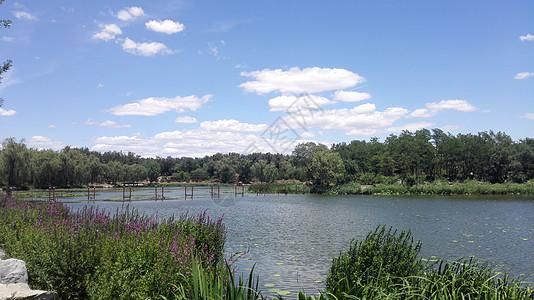 景区旅游晴天云和水图片