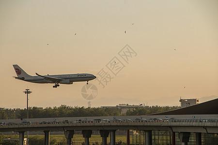 繁忙的飞机图片