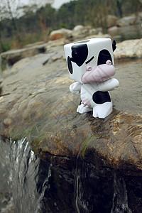 水边的小奶牛图片