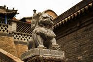威武的狮子图片
