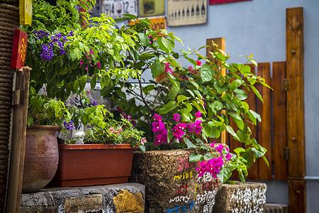 家外花园图片