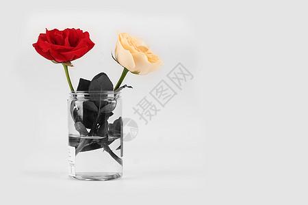 插花作品花瓶里的玫瑰图片
