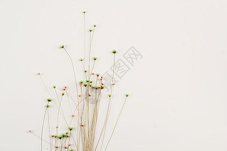 碎花背景图片