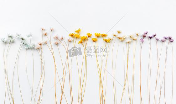小碎花壁纸背景图片