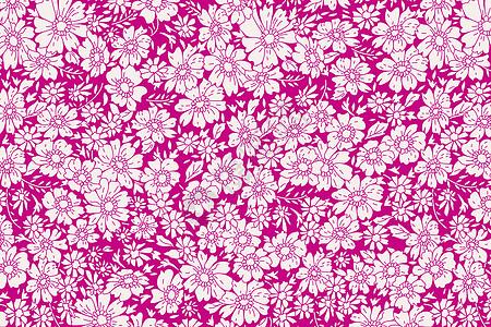 枚红色花纹布纹图片