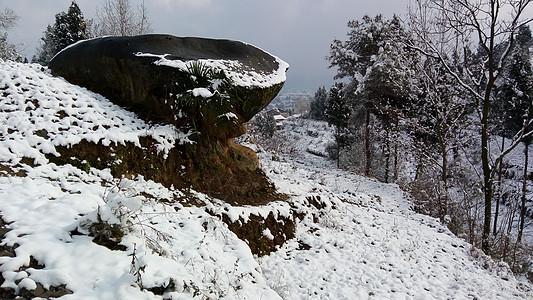 冬天的石头图片