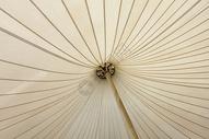 伞里的图案图片